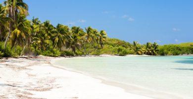 Orilla de playa en Isla Contoy